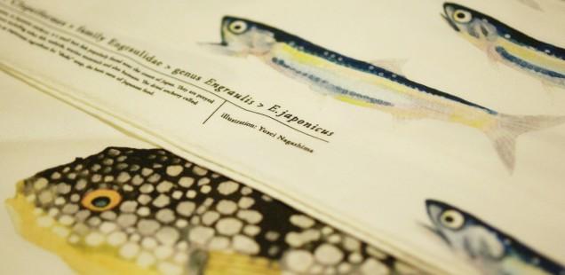 「魚の譜」ハンカチ