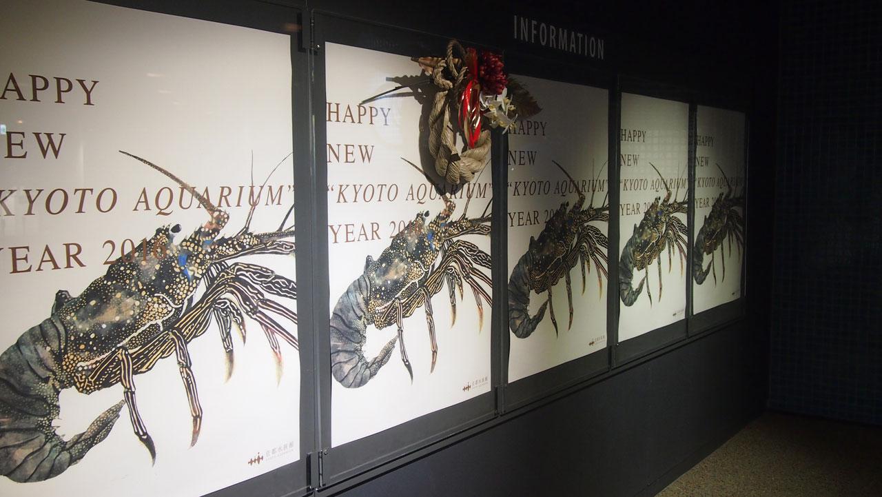 京都水族館さまの年賀シマイセエビのポスター